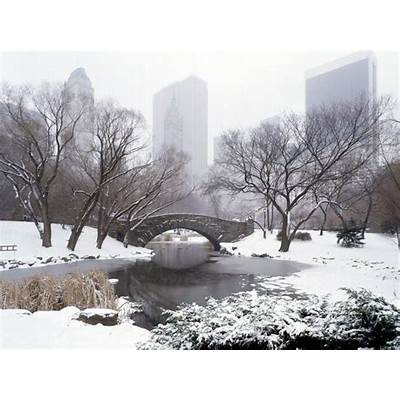 New York Central Park in Pictures - My Pakistan
