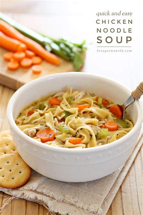 Quick And Easy Chicken Soup Recipe — Dishmaps