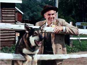 """Original The Littlest Hobo 1963 in Color! Rare """"Trouble In ..."""