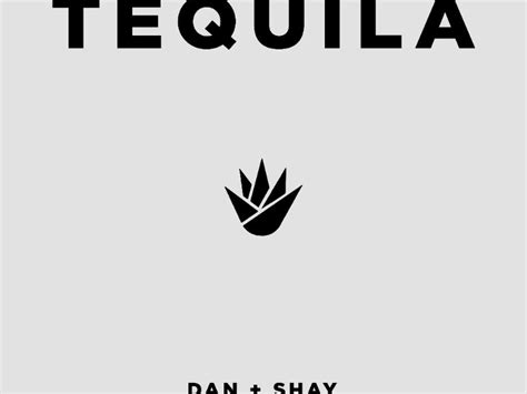 "Dan + Shay Take ""tequila"" To Country Radio"