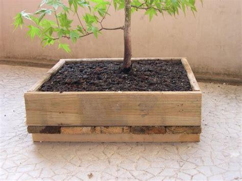 parlons bonsai construction d une caisse en bois