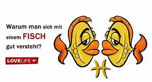 Sternzeichen Fisch Stier : warum man sich mit einem fische sternzeichen gut versteht ~ Markanthonyermac.com Haus und Dekorationen