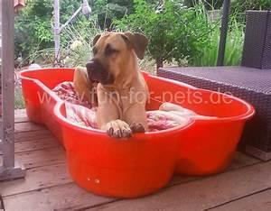 Hundeplanschbecken Selber Bauen : hunde pool selber bauen finest full size of pool selber basteln hunde pool selber bauen ~ Markanthonyermac.com Haus und Dekorationen