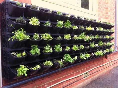 Vertical Vegetable Gardening Ideas
