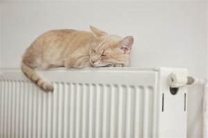 Wie Bekomme Ich Meine Wohnung Warm Ohne Heizung : bett platzieren dachschr ge im schlafzimmer ~ Markanthonyermac.com Haus und Dekorationen