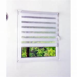 Sichtschutz Fenster Innen : duo rollo sonnenschutz sichtschutz als rollo fliegenbre ~ Markanthonyermac.com Haus und Dekorationen