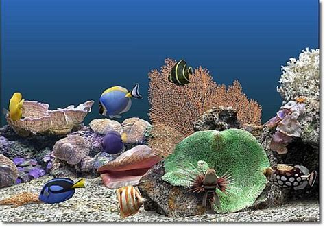 t 233 l 233 charger marine aquarium pour windows freeware