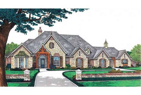 images one level country house plans eplans country house plan luxury living on a