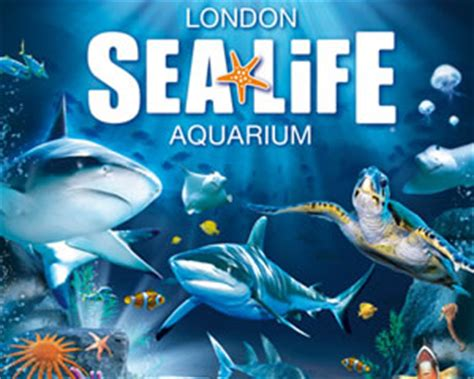 londen sea mbd tickets