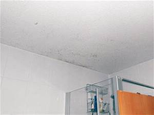 Hausmittel Gegen Schimmel In Der Dusche : schimmel im bad die sachverst ndige zeigt wo es schimmelt ~ Markanthonyermac.com Haus und Dekorationen