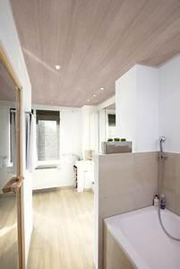 Moderne Holzdecken Beispiele : rheinhessischer holzhandel holzdecken ~ Markanthonyermac.com Haus und Dekorationen
