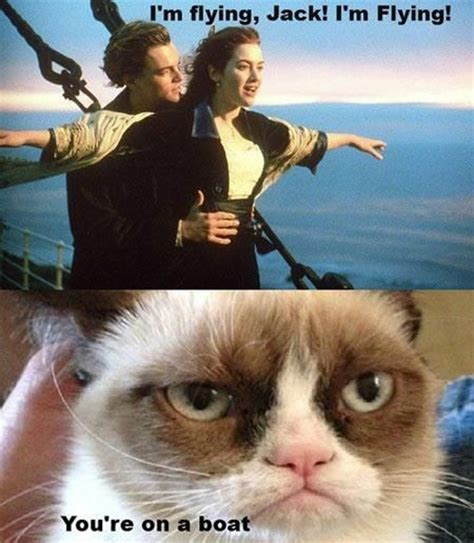 Boat Dog Captions by Grumpy Cat Movie With Captions Grumpy Cat Captions