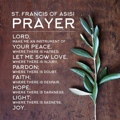 25 best ideas about st francis on francis of assisi quotes st francis quotes and