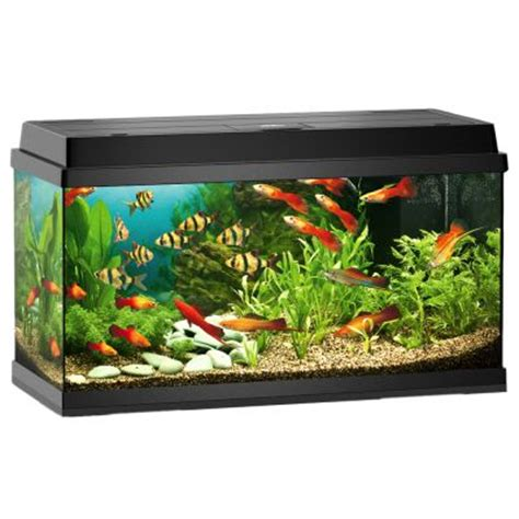 juwel rekord 800 aquarium approx 110 l black