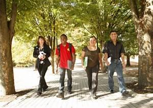 Youth Risk Behavior Survey (YRBS) - Kentucky Department of ...