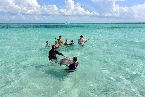 Catamaran Snorkeling Grand Cayman by Grand Cayman Stingray City Sandbar Catamaran Sailing