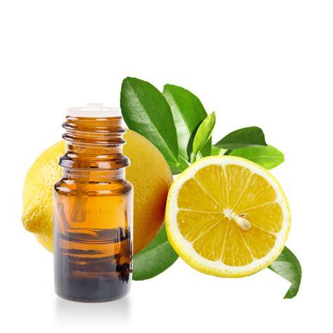 huile essentielle de citronnier fiche d informations d 233 taill 233 e
