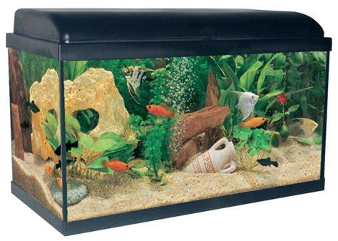 aquarium 54 litres aquadream noir animaloo