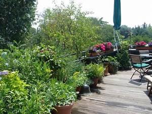 Was Tun Mit Pflanzen Im Urlaub : balkon bepflanzen f r einen tollen urlaub auf balkonien planungswelten ~ Markanthonyermac.com Haus und Dekorationen