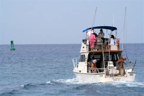 Anna Maria Island Boat Charters by 5 Reasons To Book An Anna Maria Fishing Charter