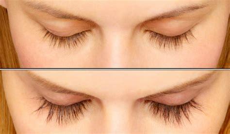 l ingr 233 dient incontournable pour faire pousser les cheveux les cils ou les sourcils astuces