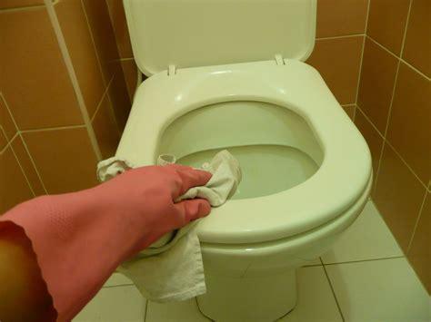 comment nettoyer lunette wc jaunie la r 233 ponse est sur admicile fr