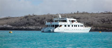 Small Catamaran Galapagos by Galapagos Islands Last Minute Cruises What To Know