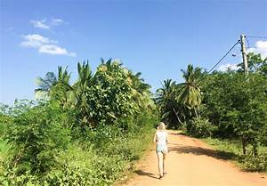 Sri Lanka Immobilien : zoete foodie op reis sri lanka zoetrecepten ~ Markanthonyermac.com Haus und Dekorationen