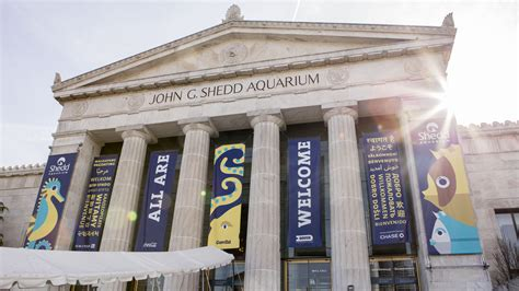 shedd aquarium to replace tiered pricing with flat fee