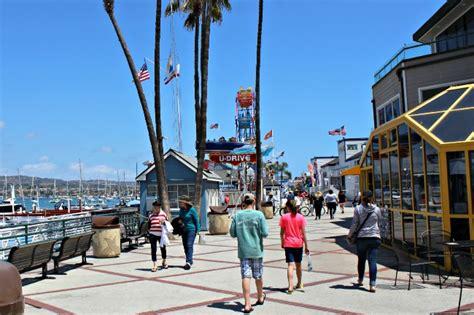 Boat Tour Newport Beach by Newport Beach A Whale Watching Tour And Pretty Beach