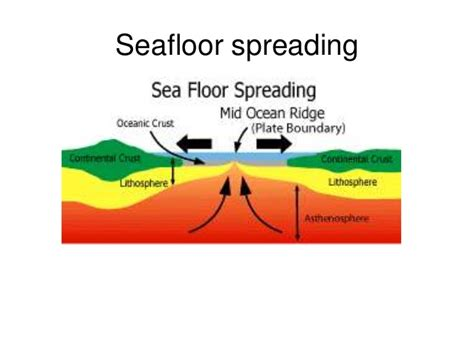 Sea Floor Spreading Subduction Animation by Seafloor Spreading And Subduction