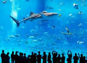 le plus grand aquarium du monde
