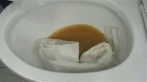 comment deboucher les toilettes