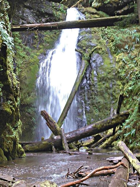 18 Best Cottage Grove Ranger District, Or Places & Things