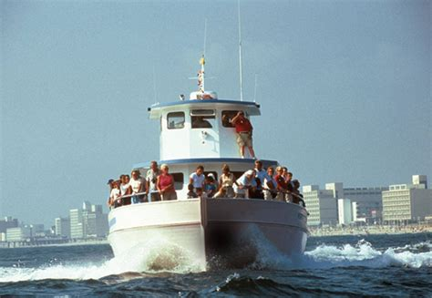 Virginia Aquarium Dolphin Watching Boat Trips by Gallagherstravels Virginia Beach Is For Water Lovers