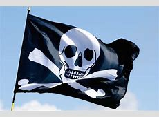 Pirate Flag Free Stock Photo Public Domain Pictures