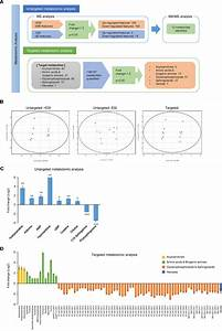 Oncotarget | Multi-omics analysis reveals that ornithine ...