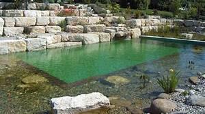 Badeteich Im Garten : biopool nat rlicher schwimmteich im garten gvb hausinfo ~ Markanthonyermac.com Haus und Dekorationen