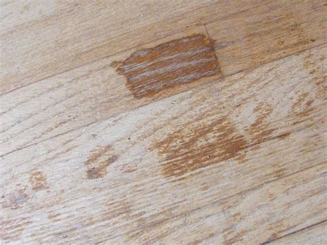 how to get urine out of wood floors wb designs