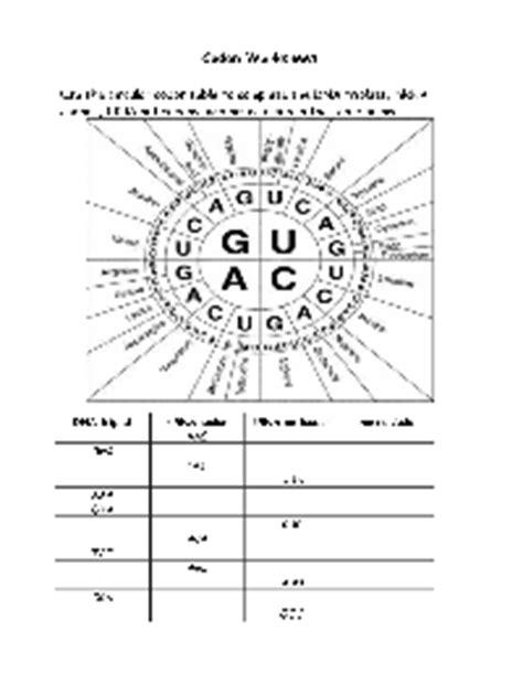 Other Worksheet Category Page 957 Worksheetocom