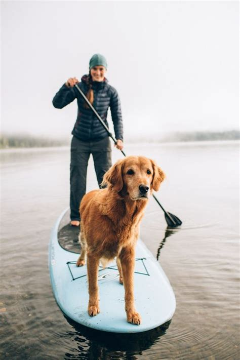 Dog Boat Captain by 17 Best Images About Quot Oh Lucy I M Home Quot On Pinterest