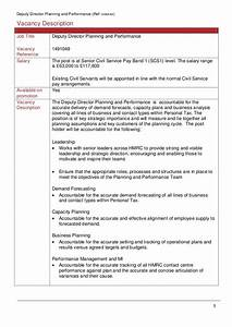 HMRC Deputy Director Planning and Performance Candidate ...
