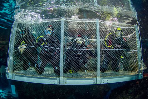 aquarium de barcelone moll d espanya port vell 8039 barcelona informations news avis