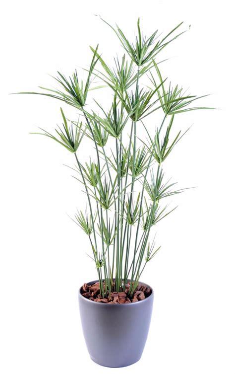 plante artificielle papyrus ornemental plastique en pot int 233 rieur ext 233 rieur h 110cm vert