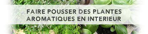 faire pousser des plantes aromatiques en int 233 rieur le coin potager