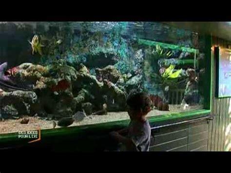 sealand l aquarium de noirmoutier