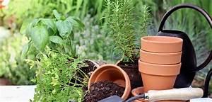 Garten Was Tun Im März : gartenarbeit im m rz was im fr hjahr zu tun ist haus garten ~ Markanthonyermac.com Haus und Dekorationen