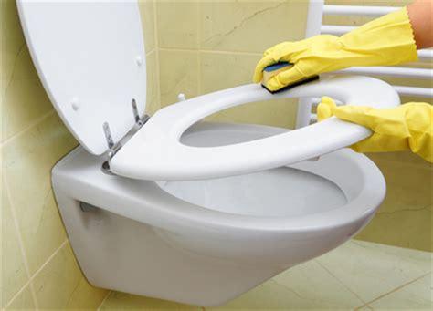 nettoyer les toilettes d 233 sinfectant naturel