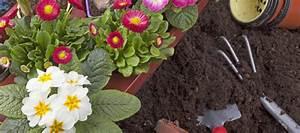 Garten Was Tun Im März : gartenarbeit im m rz das gibt es jetzt zu tun ~ Markanthonyermac.com Haus und Dekorationen