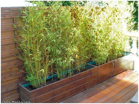 shamwerks terrasse project terrasse project bacs 224 bambous